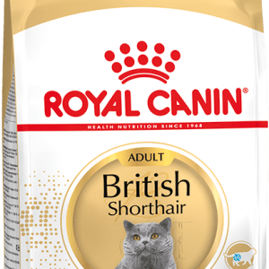 Royal Canin British Shorthair 0